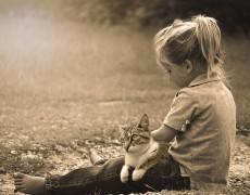 Is er een verschil tussen hsp kinderen en nieuwe tijds kinderen?